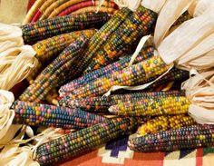 Glass Gem Corn Gift Bundle