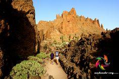 RUTA DE CHAVAO #teide #hiking #hike #senderismo