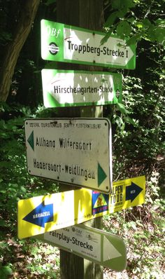 Schilderwald im Wald bei Wien Vienna, Tours, Woodland Forest, Shop Signs, Nature