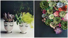 decoracao-arranjos-suculentas-studio-lab-decor  (4)