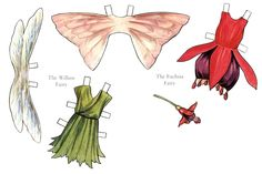 FLOWER FAIRIES - Polimnia Polimnia - Picasa Webalbum* 1500 free paper dolls at Arielle Gabriels The International Paper Doll Society and also free Asian paper dolls at The China Adventures of Arielle Gabriel *