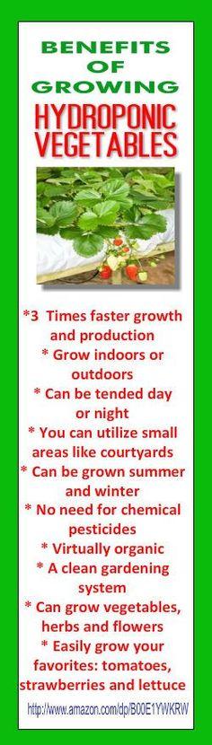 Aquaponics Vertical Farming - All For Garden Home Hydroponics, Hydroponic Growing, Hydroponics System, Aquaponics System, Hydroponic Gardening, Organic Gardening, Fruit Garden, Edible Garden, Vegetable Garden