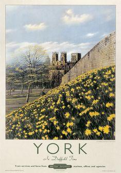 York in Daffodil Time, Yorkshire. Vintage British Railway Travel poster. 1950