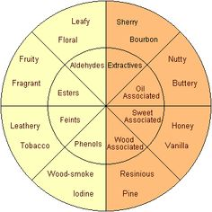 Scotch tasting wheel