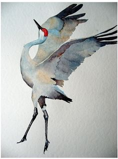 Watercolor Sandhill Crane by Robin