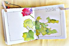In and Out of The Studio: Geranium Watercolor Sketch Catherine Carey Watercolor Sketchbook, Pen And Watercolor, Art Sketchbook, Watercolor Flowers, Watercolor Paintings, Watercolors, Fashion Sketchbook, Watercolor Border, Artist Journal