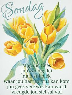 Evening Greetings, Afrikaanse Quotes, Good Night Blessings, Goeie More, Pinterest Images, Empowering Quotes, Good Morning Quotes, Christian Quotes, Happy Friday