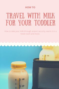 Traveling With Milk: Tips and Tricks for Traveling With Your Toddler's Milk What to expect at Airport Security, Keeping Milk cold in a hotel room with no fridge and more! Travel Usa, Travel Tips, Travel Ideas, Toddler Travel, Baby Travel, Love Dairy, Family World, Milk Alternatives, Bottle Warmer