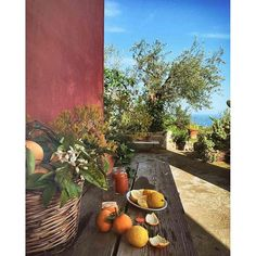 I resti di uno spuntino tra arance, limoni e mandarini.  Sicilian lifestyle.  #sicilianista #lacentrifuga #ricette #nature #landscape #spring #blossom #flowers #TagsForLikes #beautiful #season #seasons #instaspring #instagood #springtime #color #ilovespring #warm #sunny #sun #tree #pretty #TFLers #trees #flower #sicilia #colorful #kinfolk #sicily