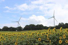 #windturbine #VortexBladeless