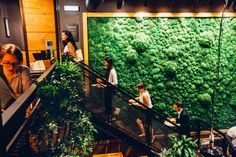Die Grüne Wand sticht heraus, doch auch sonst steht außergewöhnliche Bepflanzung und grünes Leben für unseren Imbiss der Zukunft.
