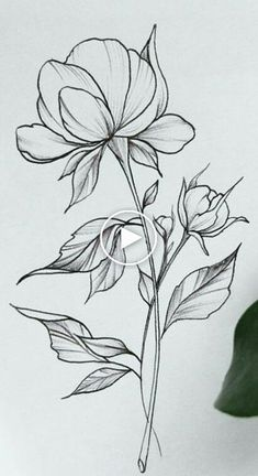 101 bezaubernde florale Tattoo-Ideen 101 bezaubernde florale Tattoo-Ideen The post 101 bezaubernde florale Tattoo-Ideen appeared first on Blumen ideen. Art Floral, Floral Drawing, Drawing Flowers, Flower Sketches, Art Sketches, Simple Sketches, Flower Tattoo Designs, Flower Tattoos, Pencil Art Drawings