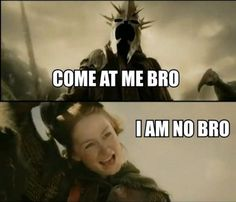 "This exchange between Éowyn and the Witch-king of Angmar. | 23 Pictures Only ""Lord Of The Rings"" Fans Will Think Are Funny"