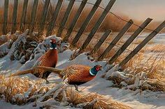 A593707365: Snow Fence-Pheasants Painting; Millette