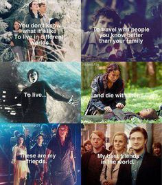 Narnia, Percy Jackson, The Hunger Games, City of Bones, Harry Potter