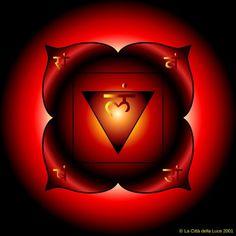 Primo Chakra: Muladhara   I 7 Chakra