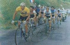Laurent Fignon, 1983, 1984 Tour de France winner; Greg Lemond, 1986, 1989, 1990 Tour de France winner; Bernard Hinault, 1978, 1979,  1981, 1982, 1985 Tour de France winner