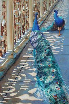 Neeharika Donau Kunst Tiere: Luft Architektur Neuzeit Realismus
