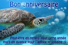 Cartes joyeux anniversaire en retard - Joliecarte.com