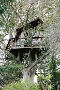 A treehouse build meters up in an coast live oak. Recycled, reclaimed and vintage materials have been used in the making. The whole construction has been put up in the tree without using any bolts or nails; Building A Treehouse, Cool Tree Houses, Tree House Designs, My Ideal Home, Tree Tops, In The Tree, Green Life, The Great Outdoors, My House