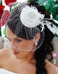 Side Ponytails with Veil Pictures? :  wedding Birdcage+Veil+3