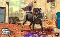 104 - AMIGOS 2 - Chop es un perro de la raza Rottweiler que aparece en 'Grand Theft Auto V'. Su dueño es Lamar Davis, aunque más tarde Franklin acabará siendo su dueño. Durante el juego, podemos dirigir a este poderoso perro en algunas misiones, para encontrar personas o lugares, además de ayudar al personaje en cuestión a encontrar paquetes ocultos.