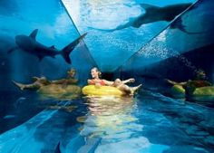 14 of the world's CraZiEsT Water slides!    Can you imagine, sliding through a shark tank? or whipping around the side of a mountain :S
