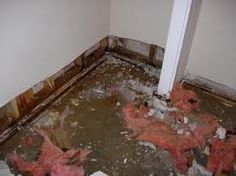 Water damage can come from many sources, flooded basements, heavy rains, sewage back-ups, toilet or bathtub overflows, flooding, or ice dams.