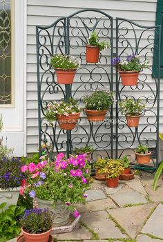 Pot container garden hanging on wire trellis...This would be great for that awkward spot in front of the house between our front door and the neighbor's door.