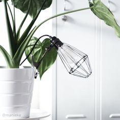 My home | Interior | Plant | Light | Lijn M | @manieke