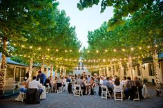 Outdoor Wedding Reception!  Click http://MagnoliaJazz.com/blog to see helpful tips for planning wedding or party music in a setting like this.  Thanks to @Style Me Pretty/