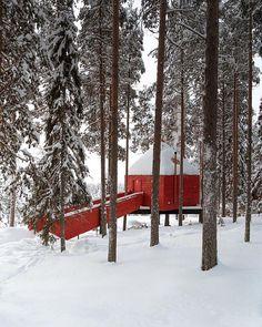 Sweden's Treehotel Destinations, Take Shelter, Road Trip, Lodges, Sweden, Alternative, World, Outdoor, Instagram