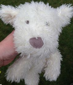 This little lovely white teddy dog found at #didsburyfestival, waiting at the cafe in park for his owner #Didsbury via Nichola Gill @redbytten #lostteddy #lostteddydog Jun 13