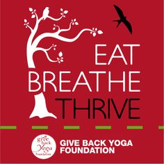 Help Chelsea Roff and her foundation to help people with eating disorders heal through yoga. Giving Back, I Care, Body Image, Trauma, Helping People, Disorders, Breathe, Chelsea, Foundation