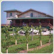 Illinois Wineries - Southern Region
