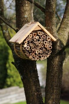 Wildlife DIY Projects Wildlife DIY Projects,Garten – Ideen für einen schönen Lebensmittelpunkt position the bee house in a sheltered position away from the elements and within close flying distance of a food and water. Bug Hotel, Garden Art, Garden Design, Garden Deco, Rain Garden, Potager Bio, Mason Bees, Bee House, Diy Garden Projects