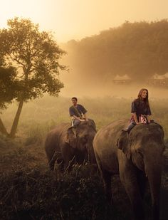 Take a misty mountain elephant trek together at @Four Seasons Tented Camp Golden Triangle.
