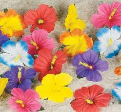 Decorative Hibiscus Flowers (24 pc) * Check out this great product.