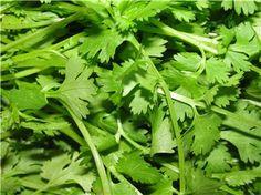Los beneficios del cilantro, la planta con efecto detox que secuestra metales pesados