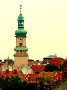 The town of Sopron in Hungary, dominated by the firewatch tower. Places Around The World, Around The Worlds, Heart Of Europe, Shot Photo, Adventure Is Out There, Dream Vacations, Empire State Building, Budapest, Croatia