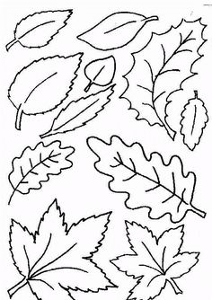 Fine Arts - OiLS - Leaf coloring pages