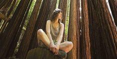 El bosque es un medicamento sin efectos secundarios Salud Natural, Forest Bathing, Get Healthy, Side Effects, Therapy, Forests, Naturaleza