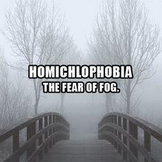 Homichlophobia - The fear of fog.