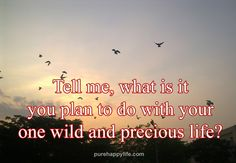 #quotes - tell me what is it...more on purehappylife.com