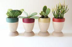 Small Wooden Planters, Seasonal Colors