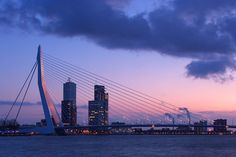 """It's easy to see why the locals call the Erasmus Bridge in Rotterdam """"The Swan. The Beautiful Country, Beautiful Places, Rotterdam Skyline, Places To Travel, Places To Go, Best Cities In Europe, Rotterdam Netherlands, South Holland, Modern Magic"""