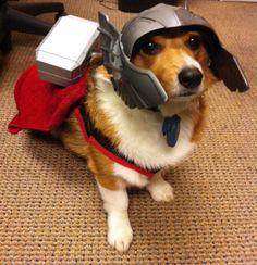 Whosoever holds this hammer, shall possess the power of Thorgi!