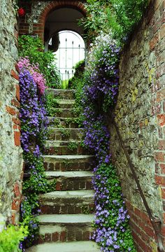 Amberley, West Sussex, England....Fab garden path of steps w/lots of very old brick and stone w/lots of accent flowers!!