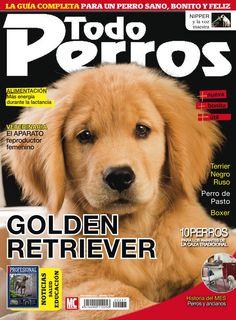 Revista #TODOPERROS 237, noviembre 2015. El #GoldenRetriever, ¿Por qué se estresa mi perro?, #Boxer, #Terrier negro ruso. La guía completa para un #perro sano, bonito y #feliz.