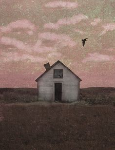Fly Away Home Sweet Home by jamie heiden, via Flickr